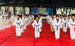 Taekwondo Belt Test